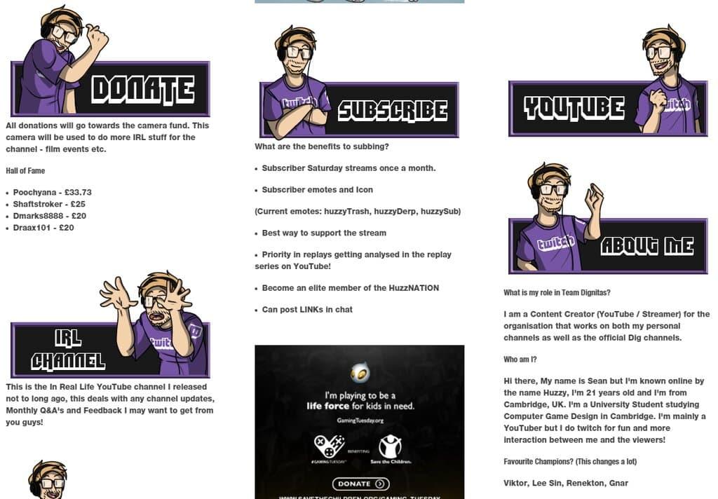 Twitch bio example